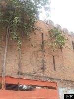 Observation: Darbhanga, India